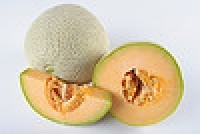 Cantaloupes involved in another outbreak