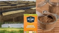 Entomo Farms raises and processes edible insects for human consumption