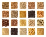 10 ancient grains to watch: from kamut to quinoa