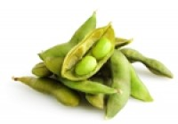 Cost and supply benefits are 'icing on the cake' for soy proteins