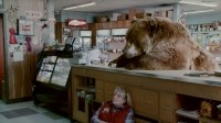 Chobani: 'While bears are known to eat everything, this bear - much to his chagrin - discovers that real, natural food choices are hard to find these days – particularly in the yogurt aisle.'