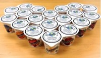 Nutroganics letter of intent to buy soy yogurt firm Wholesoy