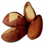Eating nuts daily tied to lower overall death rate: Harvard study