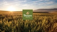 Panera to drop artificial colors, flavors, sweeteners by 2016
