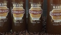 Kombucha is typically made by fermenting tea with a mixture of live bacteria and yeast, so using brewed organic coffee as a base brings something new to the category, says Reed's