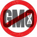 Voluntary GMO labeling helps biotech industry, not consumers