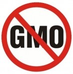 Professor: What exactly is this mythical 'pristine' alternative to GMOs that presents no risks?