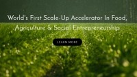 Food Future Co food accelerator prepares to unveil 2017 cohort