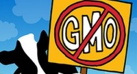 Vermont GMO labeling bill passes state senate